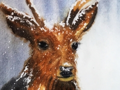 Snow deer - Watercolour