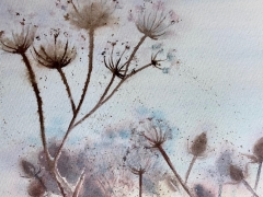 Teasles - Watercolour