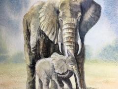A Mother's Love.JPG